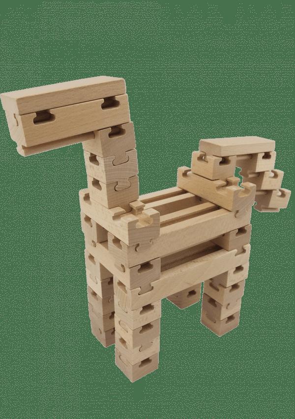 The Budding Builder 100pcs
